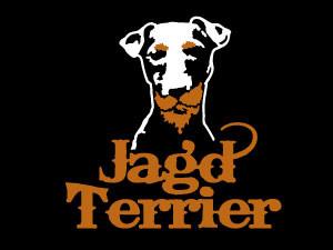 jagd terrier – funny face