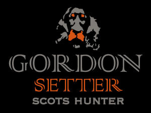 Gordon Setter, a scottish hunting companion..