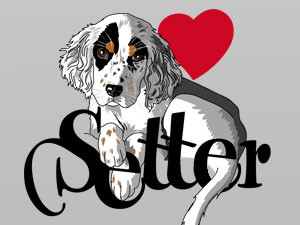there is nothing nicer than a puppy of an english setter…