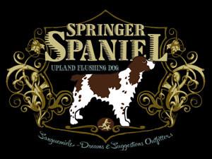 Springer Spaniel