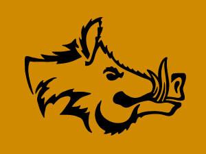 wild boar head v.3
