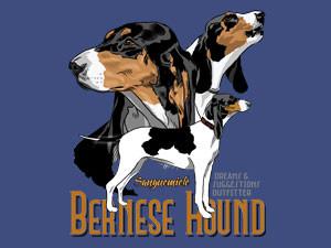 Bernese hound