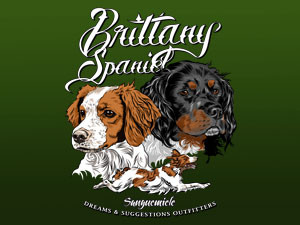 Brittany Spaniel: small, energetic, friendly hunting machine