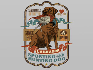 Labrador retriever, sporting and hunting dog