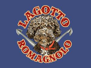 """Lagotto Romagnolo """"can da trifula"""""""