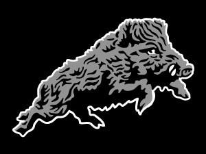 rampant wild boar