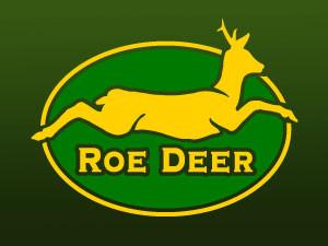 Roe Deer, Capriolo