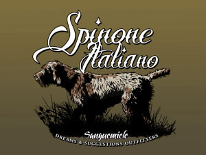 Spinone Italiano pointing