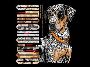 Catahoula, the best MULTI-COLOR dog!
