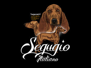 segugio italiano, best hound for hare hunting
