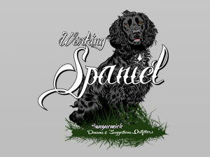Spaniels: the ideal hunting companion
