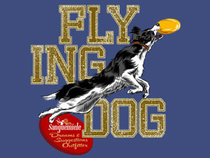 Border collie – flying dog