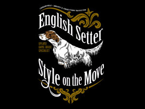 English setter, style on the move